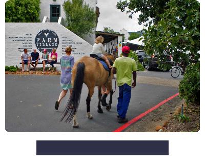 Noordhoek Unplugged | Circular Economy